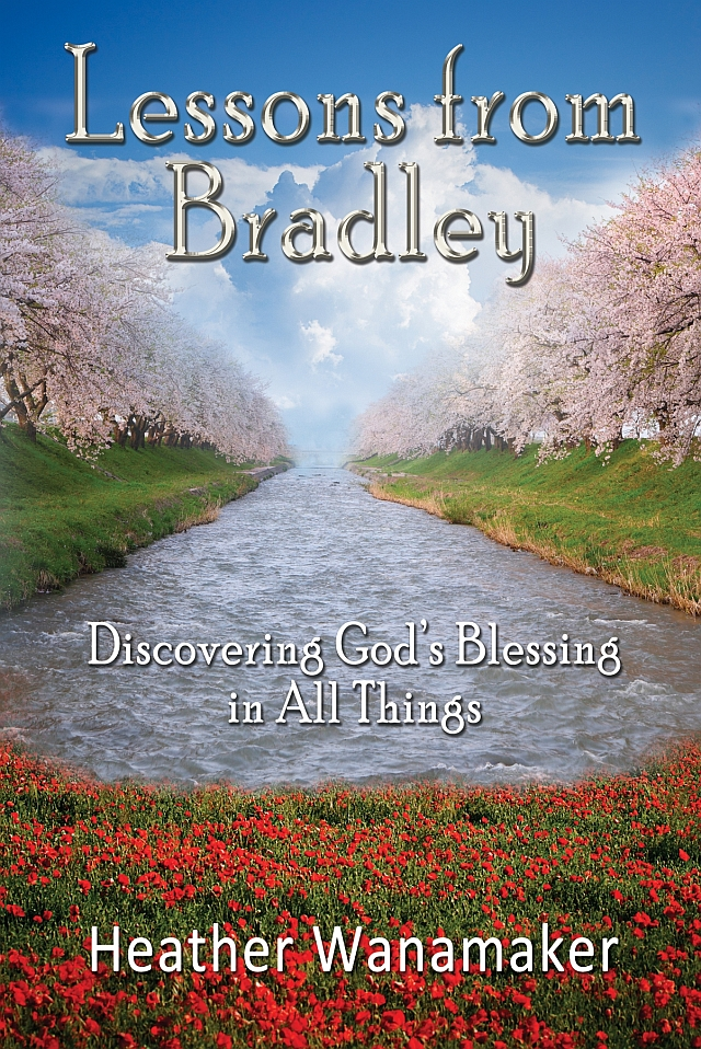 Cover for Lessons from Bradley: Discovering God's Blessing in All Things